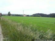 Titelbild Zwangsversteigerung drei Landwirtschaftsflächen