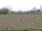 drei unbebaute Landwirtschaftsflächen