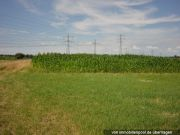 Titelbild Zwangsversteigerung land- und forstwirtschaftliche Flächen