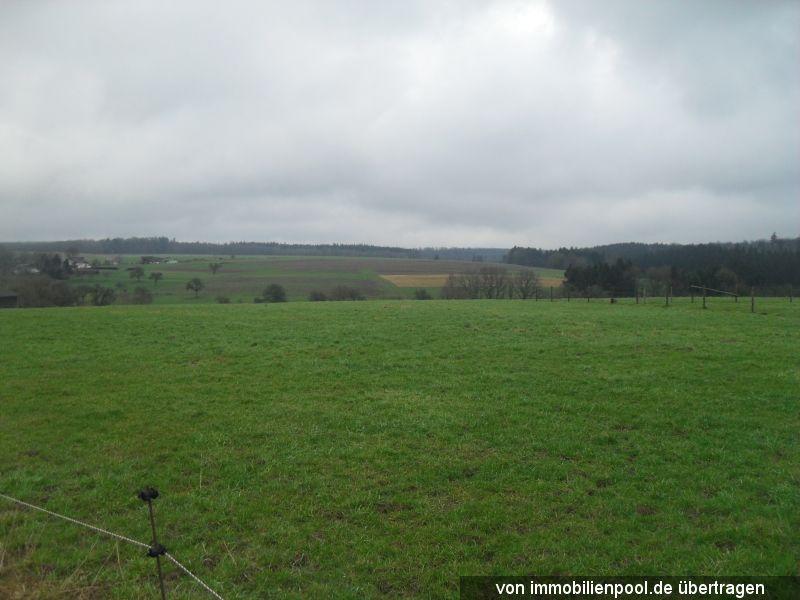 Titelbild Zwangsversteigerung 3 Landwirtschaftsflächen