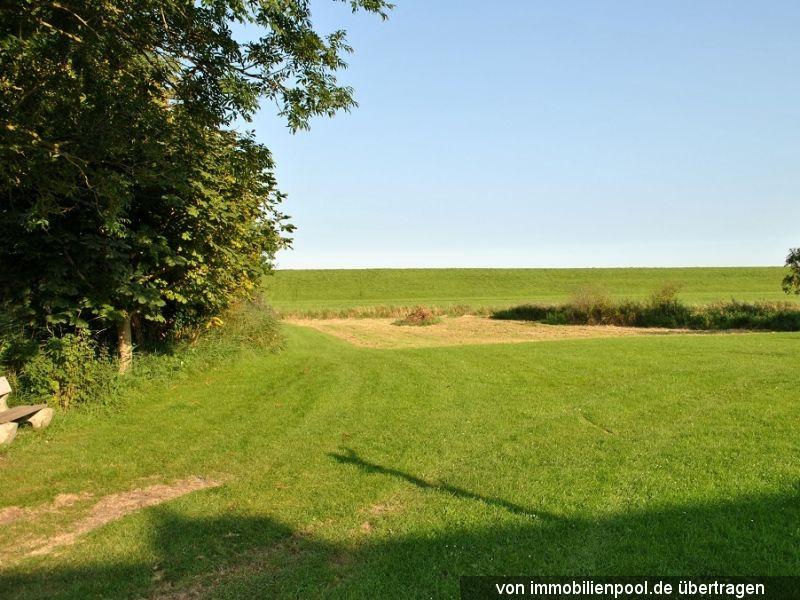 Zwangsversteigerung unbebautes Grundstück (Grünland)