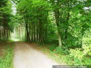 fünf Landwirtschafts- u. eine Waldfläche