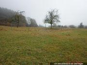 Titelbild Zwangsversteigerung zwei Landwirtschaftsflächen