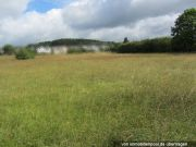 Titelbild Zwangsversteigerung landwirtschaftliches Grundstück