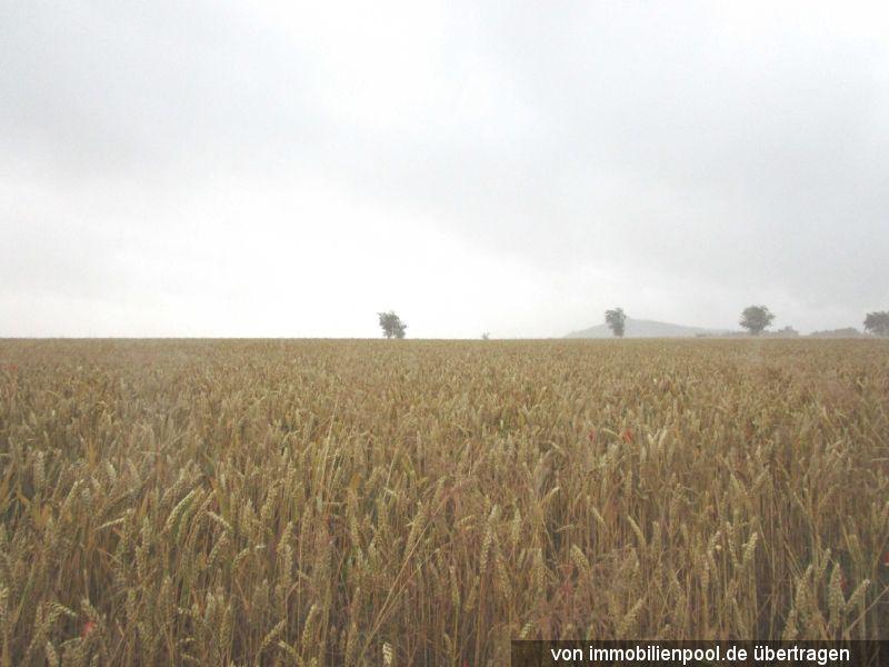 Zwangsversteigerung mehrere Landwirtschaftsflächen