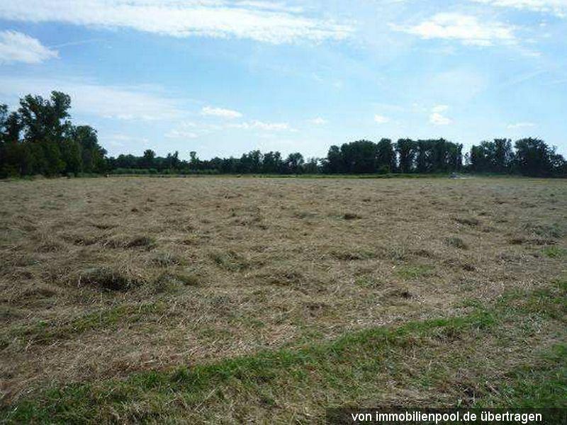 Zwangsversteigerung elf Landwirtschaftsflächen
