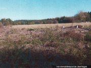Wiesen-/Waldgrundstück