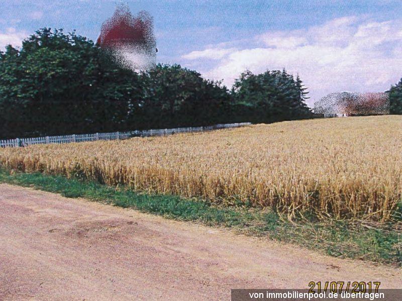 Zwangsversteigerung 1/2 Anteil an Gartenland/Landwirtschaftsfläche