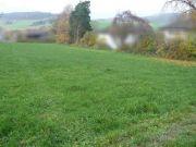 Titelbild Zwangsversteigerung mehrere Landwirtschaftsflächen