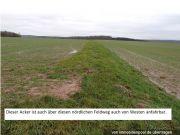 Titelbild Zwangsversteigerung Landwirtschaftsfläche/ Ackerland