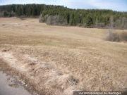 Wald- und Landwirtschaftsflächen