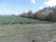 Landwirtschaftsfl.-/ Verkehrsfläche