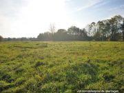 3 Landwirtschaftsflächen