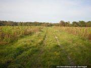 Titelbild Zwangsversteigerung 2 landwirtschaftliche Grundstücke