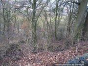 Titelbild Zwangsversteigerung unbebautes Grundstück (Wald)