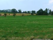 Titelbild Zwangsversteigerung Landwirtschaftsfläche