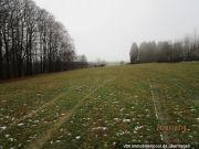 land- und forstwirtschaftlich genutztes Grundstück