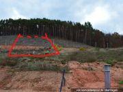 Titelbild Zwangsversteigerung Waldfläche und bebaubare Freiflächen