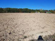 Titelbild Zwangsversteigerung vier Landwirtschaftsflächen