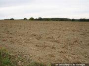 Landwirtschaftsfläche FlSt. 25