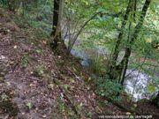 Waldfläche FlSt. 9
