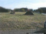 Titelbild Zwangsversteigerung zwei unbebaute Grundstücke/Bauland