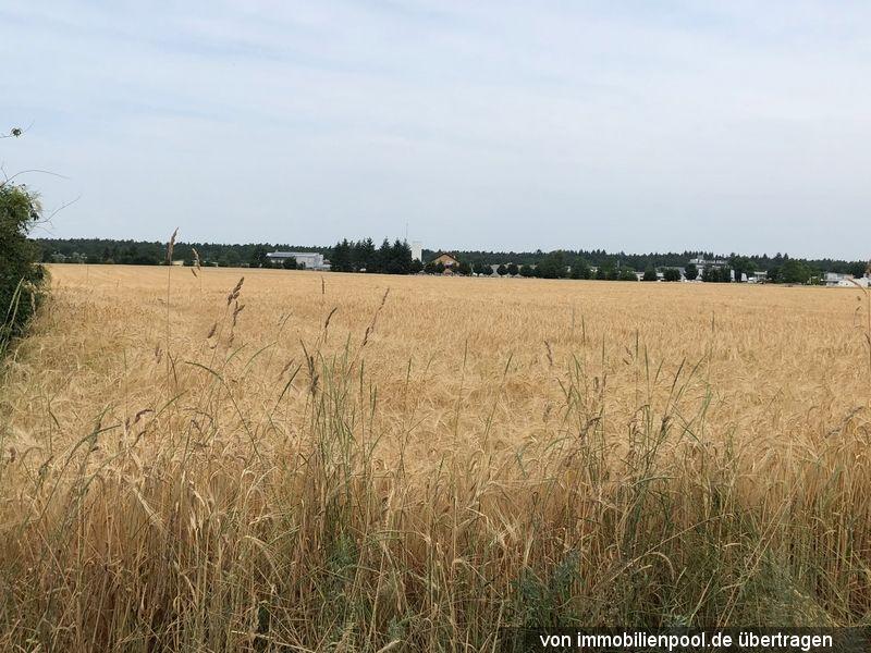 Zwangsversteigerung drei Landwirtschaftsflächen
