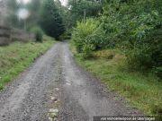 Bild zu Wald-/Erholungsfläche