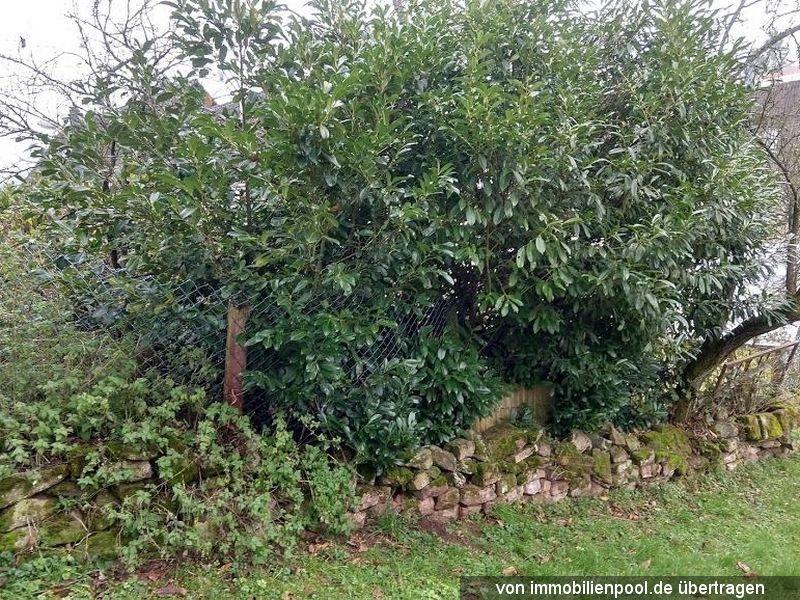 Zwangsversteigerung mehrere Landwirtschafts- und Waldflächen