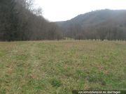 Titelbild Zwangsversteigerung zwei Grünland-Grundstücke