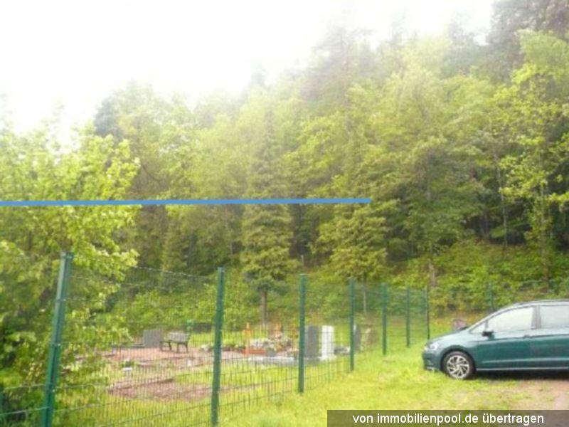 Zwangsversteigerung Holzung / Waldfläche