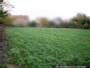 2 Bauland-Grundstücke / 1 Acker
