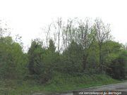 Titelbild Zwangsversteigerung zwei Grundstücke / Landwirtschaftsflächen